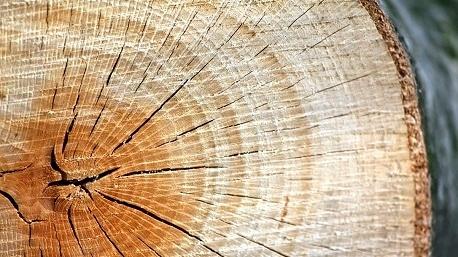 atelier bricolage imprimer une photo sur du bois. Black Bedroom Furniture Sets. Home Design Ideas