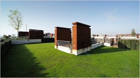 Die Dachterrasse mit Rasenfläche