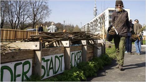 ... und nun ist er da: der Stadtacker. (Bilder: urbane-gaerten-muenchen.de)
