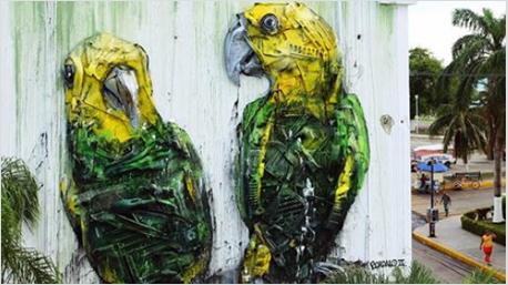 Papageien in Ciduad del Carmen, Mexico