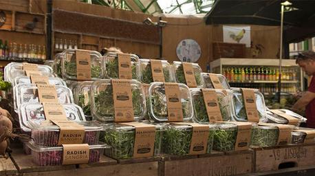 Diese appetitlichen Salate und Sprossen haben einen ganz besonderen Ursprung. (Bild: Growing Underground)