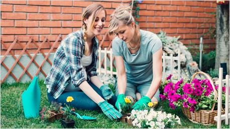 Ein Zeitgeschenk: Blumen pflanzen statt Blumen schenken.