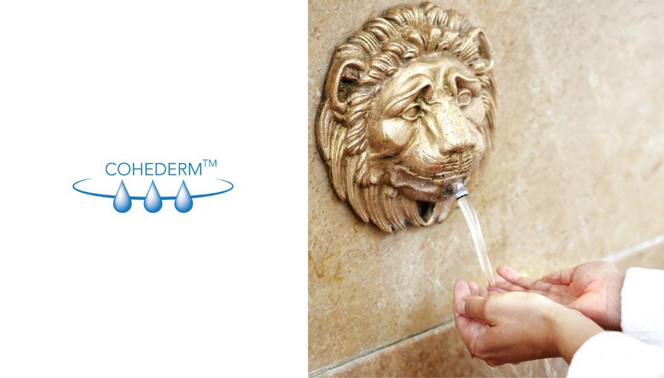Neben 77 % Thermalwasser setzt Eau Thermale Avène den Aktivstoffkomplex Cohederm™ ein, der die Wasserreserven der Haut wieder auffüllt.