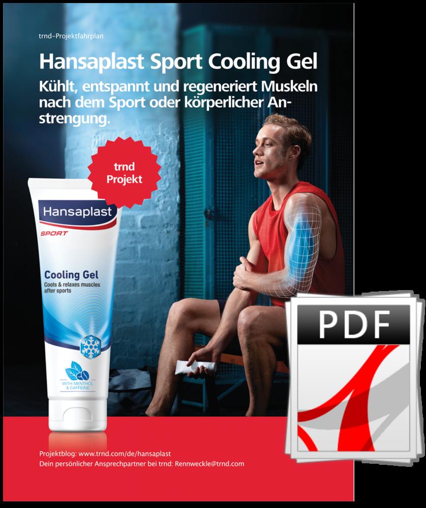 Hansaplast Sprt Cooling Gel Projektfahrplan.