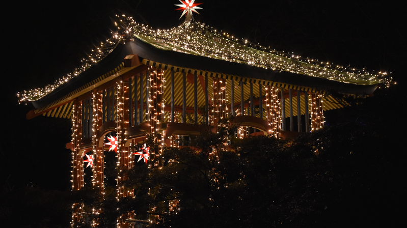 """trnd-Partnerin Jerrylie hat mit der Nikon das Lichtspektakel """"Christmas Garden"""" eingefangen."""