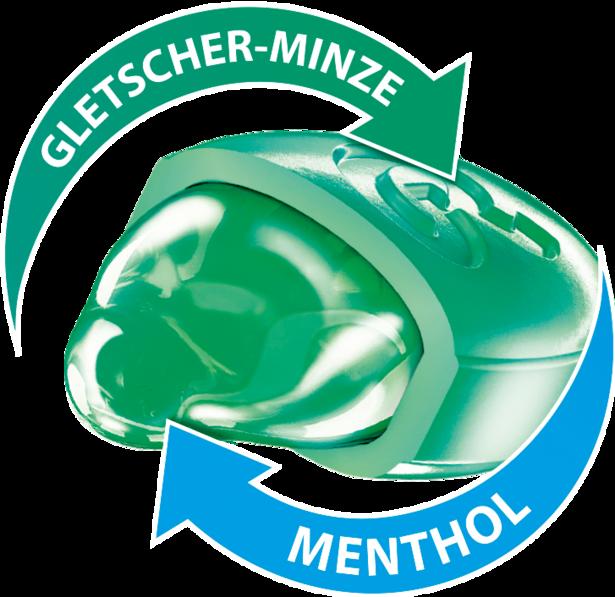 gletscher-minze