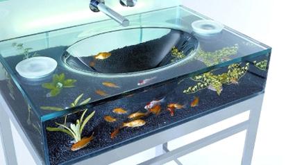 Coole Waschbecken aquarium-waschbecken
