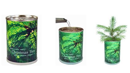 weihnachtsbaum in der dose. Black Bedroom Furniture Sets. Home Design Ideas