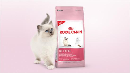 Royal Canin Kitten es un alimento especialmente formulado para gatitos de 4 a 12 meses de edad, que les aporta todos los nutrientes necesarios para un crecimiento óptimo.