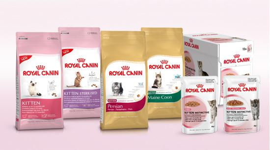 La marca ha creado una gama para la alimentación de los gatitos a partir de los 4 meses adaptada a algunas características y razas…