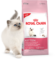 Royal-Canin-Kitten