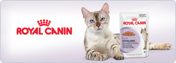 Blog Royal Canin Sterilised Húmedo