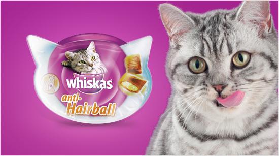 Junto a 2.500 trndian@s y sus mascotas descubriremos la gama Whiskas Premios y probaremos Whiskas anti-Hairball…