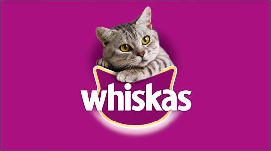 Whiskas lleva más de medio siglo cuidando de los gatos. De hecho, es la marca de alimentación felina más conocida en España y la que más mininos alimenta en el mundo.