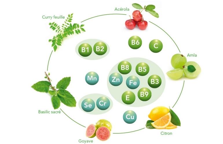 Fruits et plantes