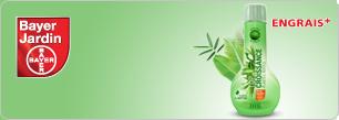 Top Croissance Plantes Vertes