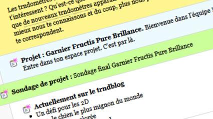 trnd_Garnier-Fructis-Pure-Brillance_sondage final