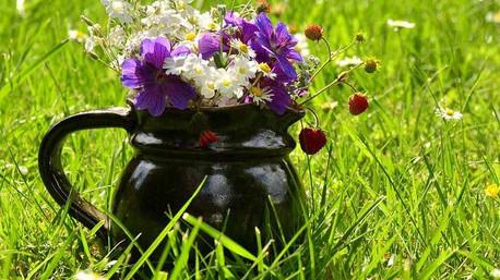Un mazzo di fiori campagnoli è perfetto per la mamma e gli amici.