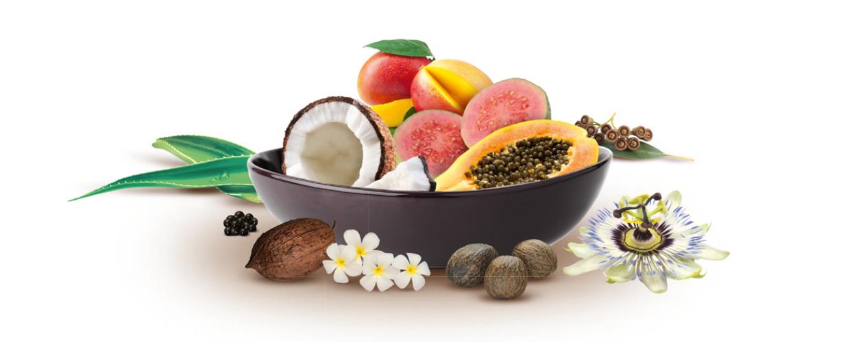 Gli ingredienti e fragranze di queste isole ci arrivano dalla mano di Hawaiian Tropic...