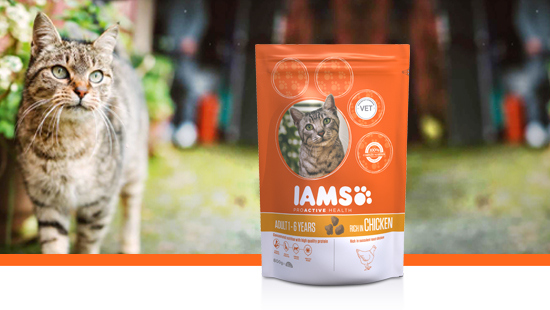 IAMS ProActive Health is designed with cats' needs in mind, providing nutritionally complete dry food that contains premium ingredients and natural animal protein.