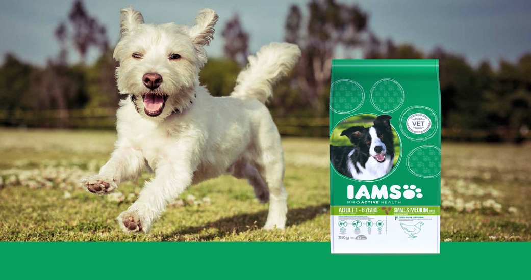 IAMS ProActive Health is designed with dogs' needs in mind, providing nutritionally complete dry food that contains premium ingredients and natural animal protein.
